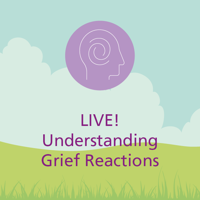 Understanding grief reactions