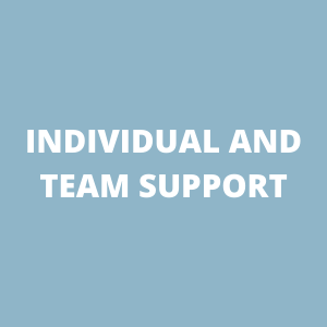 Individual and team support
