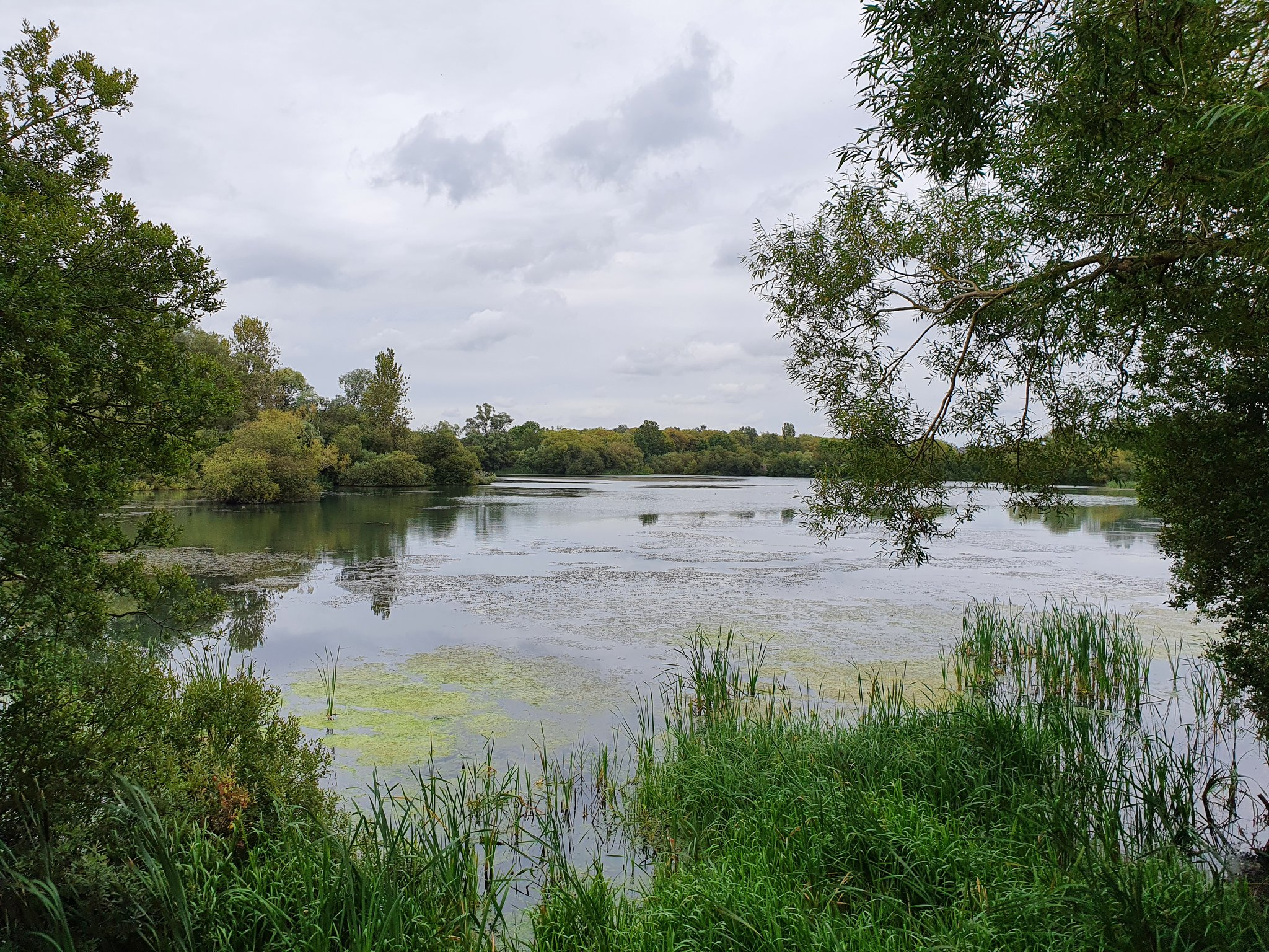 One of the photography challenge's objectives was to capture green, like in this riverside scene
